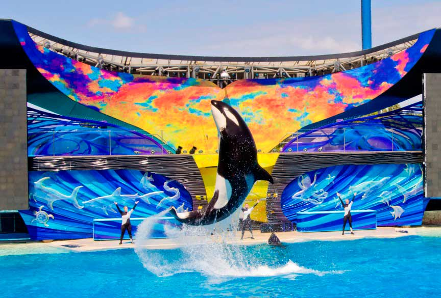 парк развлечений SeaWorld Parks and Entertainment