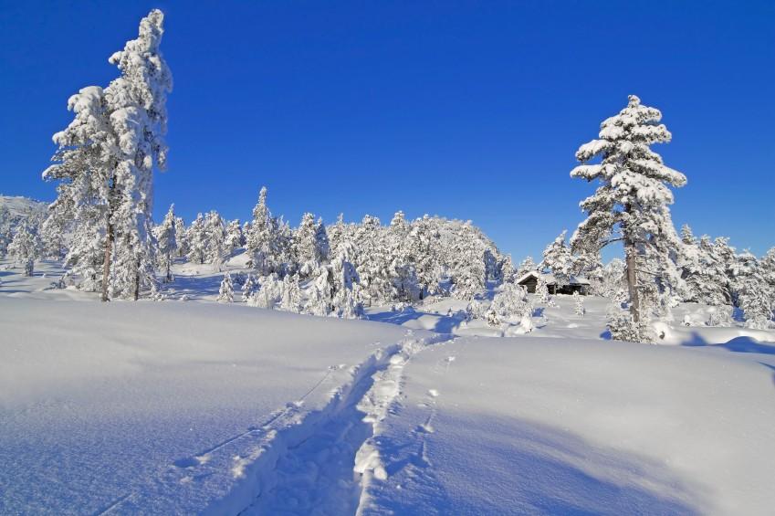 Эренделлиз (Arendelle) из «Холодного Сердца»: Трёнделаг, Норвегия