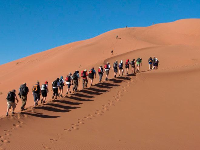 Поход по пустыне Сахара