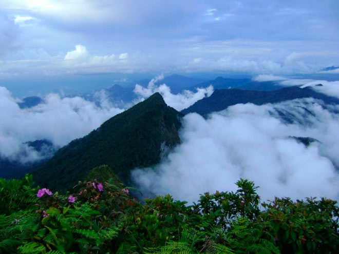 Поход через джунгли Борнео