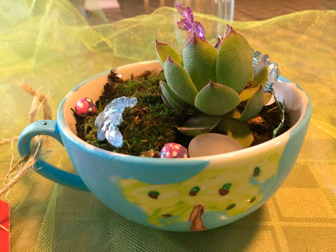 Сад в кружке чая