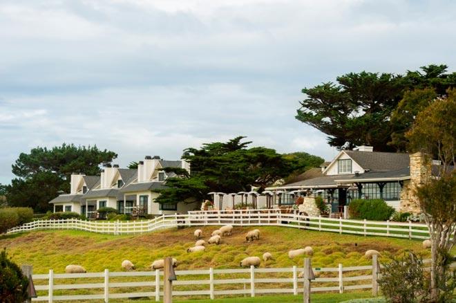 Клинт Иствуд владеет отелем на ранчо