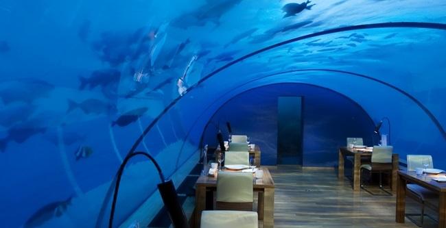Ресторан Ithaa Undersea, Мальдивы