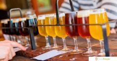 10 марок восхитительного пива, которые вы должны попробовать